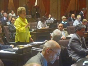 House Transportation Chairwoman Judy Clibborn, D-Mercer Island.
