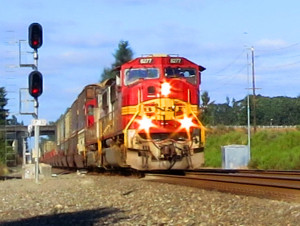 A BNSF freight barrels past a signal on the main line near Lacey.