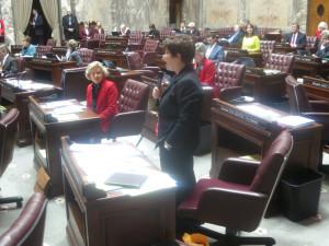 Sen. Pam Roach, R-Auburn, makes pitch for constitutional amendment on Senate floor.